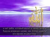 Шейх аш-Шанкыти Послание подавленному тяготами жизни